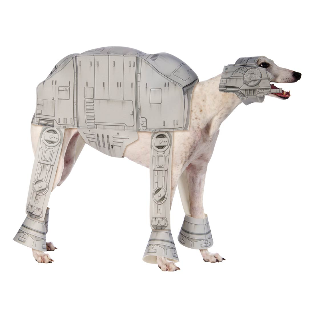 Stars Wars Dog Costume | Daytripfinder blog