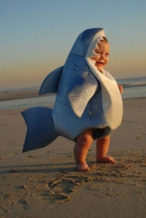 bay shark halloween costume