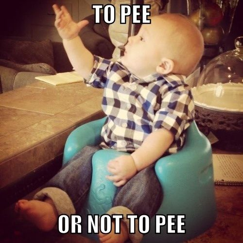 to-pee-or-not-to-pee