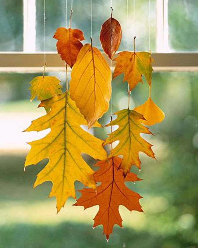Wax Dipped Leaves