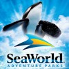 cheap seaworld tickets